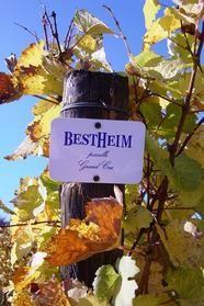 BESTHEIM C'est en 1765, à Westhalten, petit village du Haut-Rhin blotti au cœur de la Vallée Noble, que naît la Maison Heim. Toujours portés par l'amour du métier et du terroir, les successeurs d'Alfred Heim se sont mis en quête de nouvelles terres et se sont installés sur les coteaux de Bennwihr.
