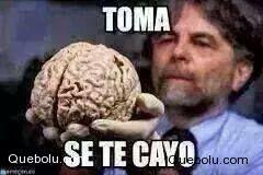 Toma, se te cayó #queboluFan #memes #meme #hacerMeme #crearMeme quebolu.com
