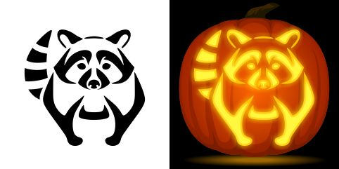 Raccoon pumpkin carving stencil. Free PDF pattern to download and print at http://pumpkinstencils.org/download/raccoon-pumpkin-stencil/