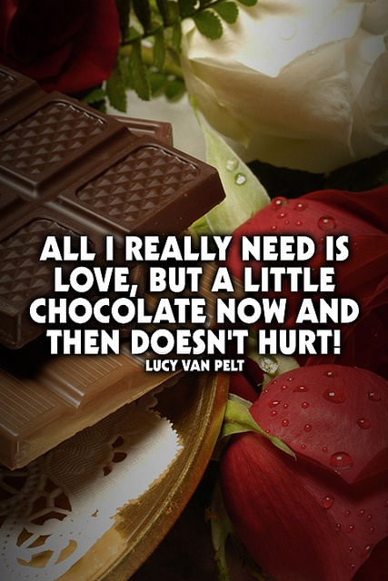 All I really need is love, but a little chocolate now and then doesn't hurt! Lucy Van Pelt    www.dark-chocolate-diet.com: Photo