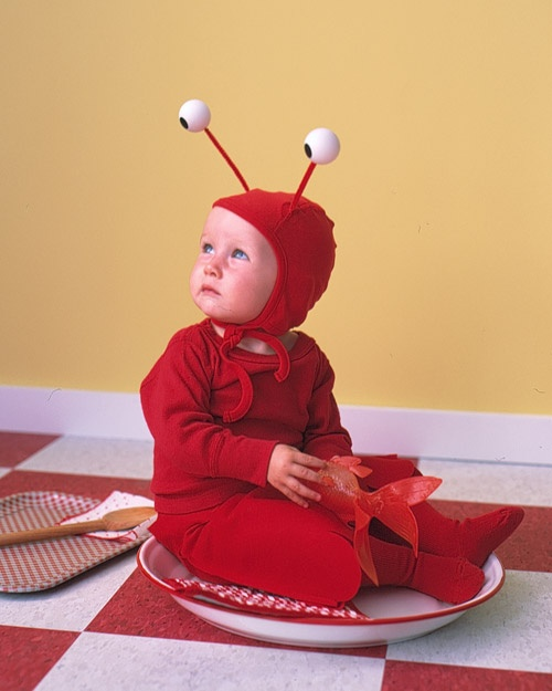 Lobster Costume - Martha Stewart Holiday & Seasonal Crafts