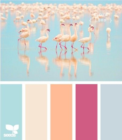 #Farbbberatung #Stilberatung #Farbenreich mit www.farben-reich.com Flamingo-inspired palette!