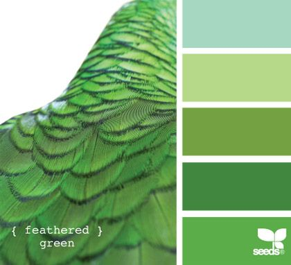 feathered green