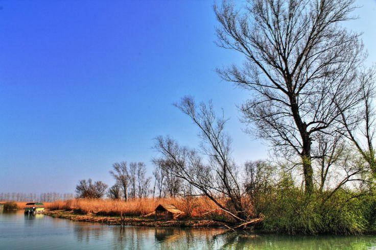 Il Parco del Mincio - Mincio Park #Mantova #Mantua #arte #art #cultura #culture #Italia #Italy #parco #park #mincio
