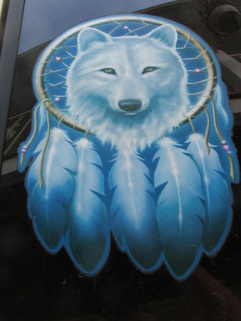 wolf dreamcatcher drawing related - photo #32