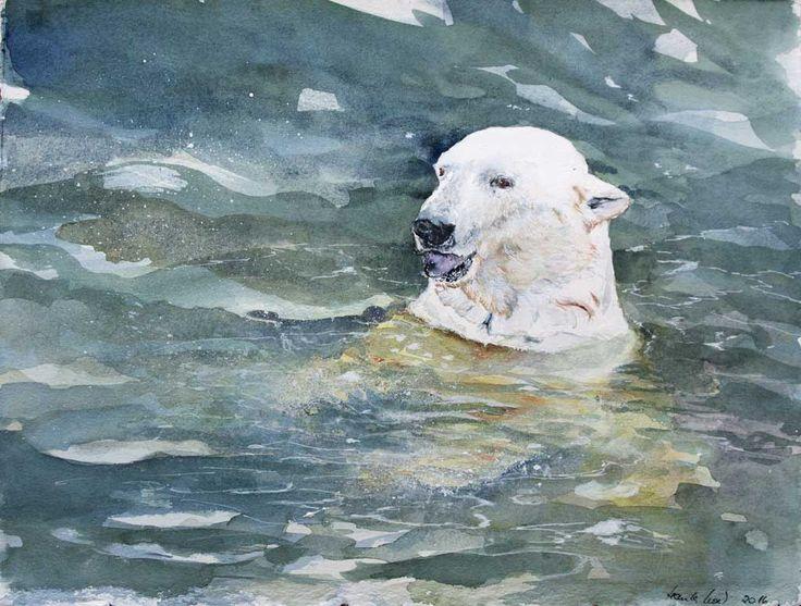 Vorbereitung für unsere Ausstellung im Rostocker Zoo | Was kommt jetzt? (c) ein Eisbären Aquarell von Hanka Koebsch