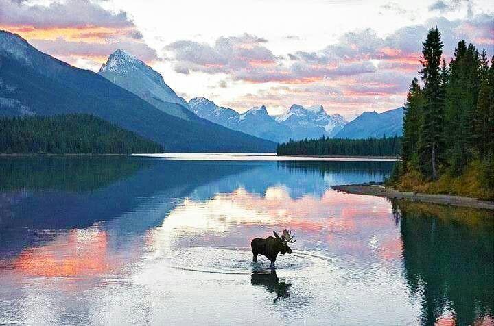 Summit Lake, Moose Pass, Alaska