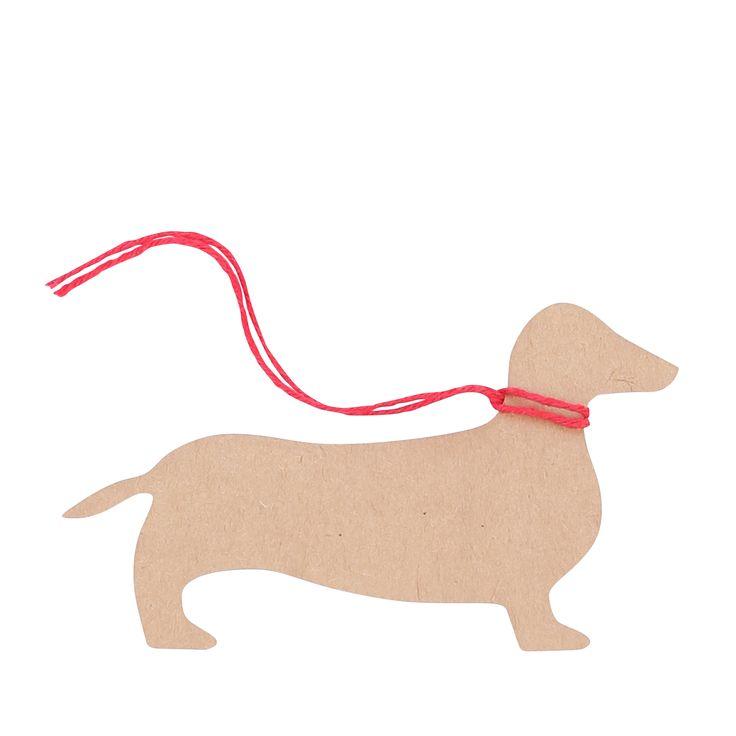 penny the dachshund - Stylie Australia
