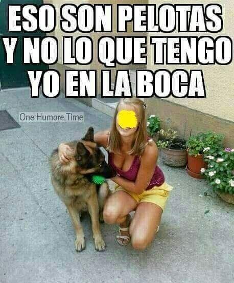 Imagenes de Humor Vs. Videos Divertidos - Mega Memeces #imagenesdechistes #memes #megamemeces #memespanol #chistes #chistesito #chistesmalos #chistesvenezuela #chistesgraficos #imagenes #imagenesgraciosas #imagenesdivertidas #lol #lolz #smile #smiles #fun #funny #funnymemes #humor #laugh #laughs #laughing #crazy #haha #lol ➧➧ http://www.diverint.com/memes-divertidos-facebook-acercamiento-fans-seleccion-sueca