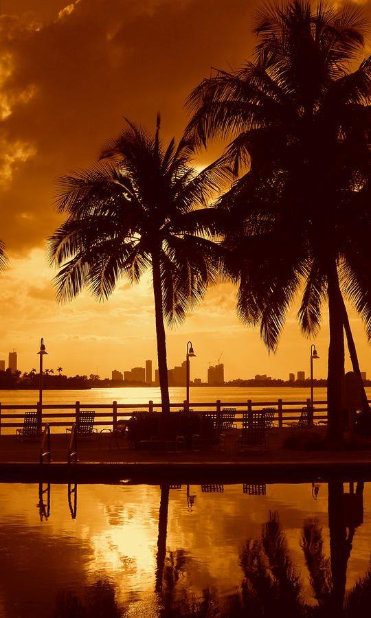 Miami South Beach Romance II