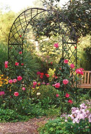 A rose garden arch ✿⊱╮ by A SoulJourney