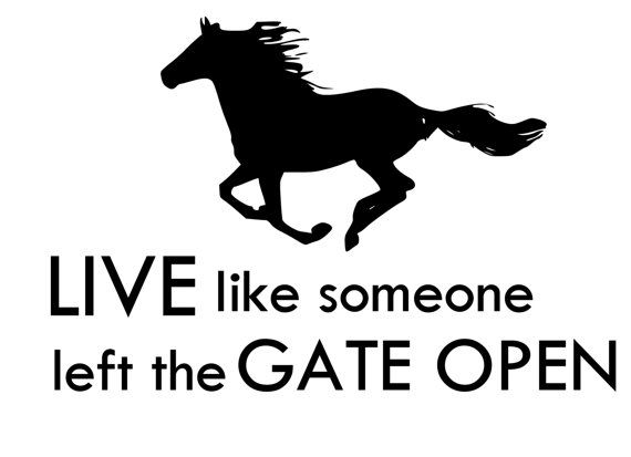 Horse-Horse Quote Horse wall decal-Horse by Artistryofthehorse