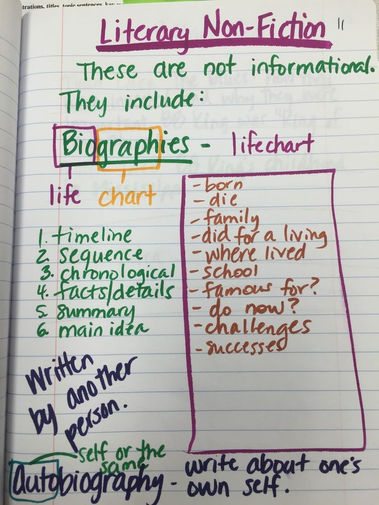 Application essay writing 4th grade