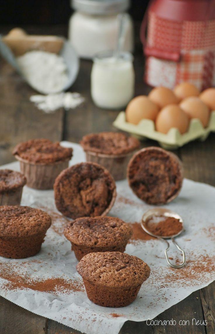 Pastelitos de Yogur y chocolate Valor
