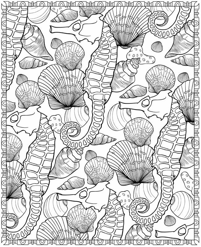 SEASHELLS PATTERNS sample colouring pages FREE from