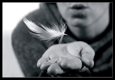 La vita non si racconta, te l'ho già detto, la vita si vive, e mentre la vivi è già persa, è scappata.  (A. Tabucchi)