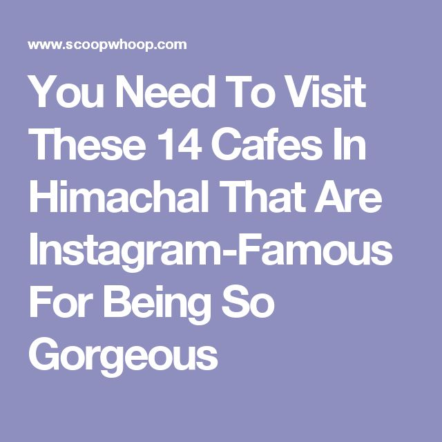 You Need To Visit These 14 Cafes In Himachal That Are Instagram-Famous For Being So Gorgeous