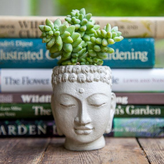 Buda cabeza plantador - olla de cemento pequeña - Buda cabeza Planter #2