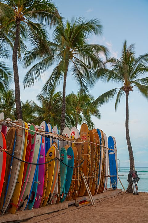 Waikiki Beach, Oahu, Hawaii | Andy Cook, RMRP