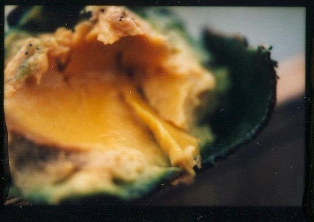 "Bill Basquin by Recology San Francisco, Art at the Dump, via Flickr ""Moldy Avocado #1"""