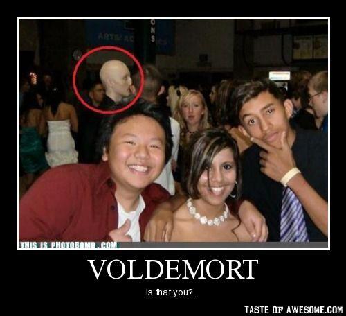 harry potter jokes really dirty | Harry Potter Voldemort Funnies!