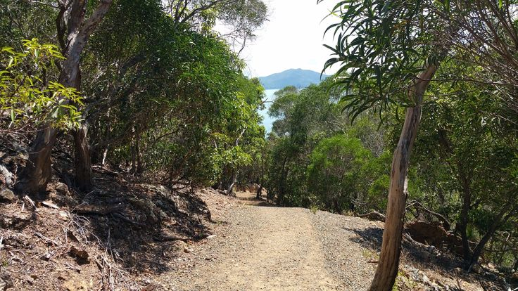 Passage Peak (Hamilton Island, Australia): Top Tips Before You Go - TripAdvisor