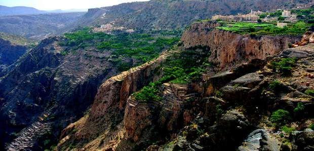 Le Jabal Al Akhdar, dans le sultanat d'OmanAvec ses cultures en terrasse où poussent grenadiers, pêchers, et abricotiers, le Jabal Al Akhdar,région des monts Hajar, principal massif montagneux d'Oman, est aussi le haut lieu de la rose. Elle sert à fabriquer la mythique