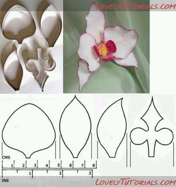 Шаблончики для орхидеи! | Студия SUNCREATIVE*Цветы из фоамирана*