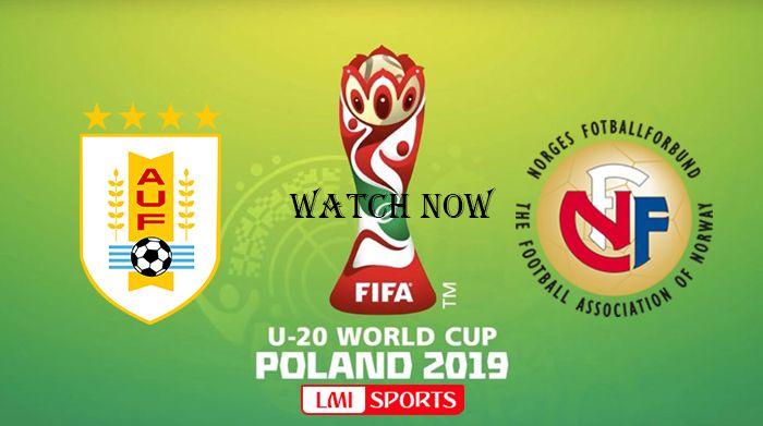 watch fifa world cup online free reddit