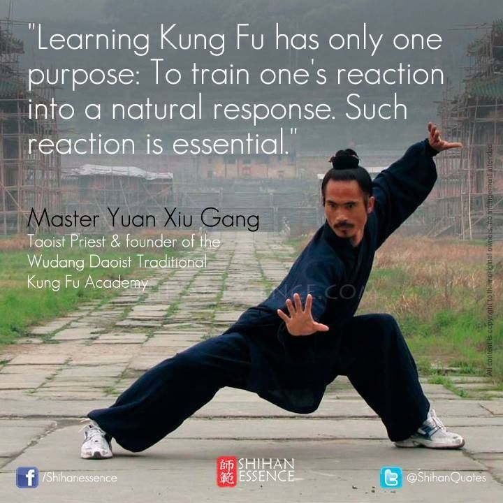 Learning Kung Fu has only one purpose: To train one's reaction into a natural response. #ShihanEssence
