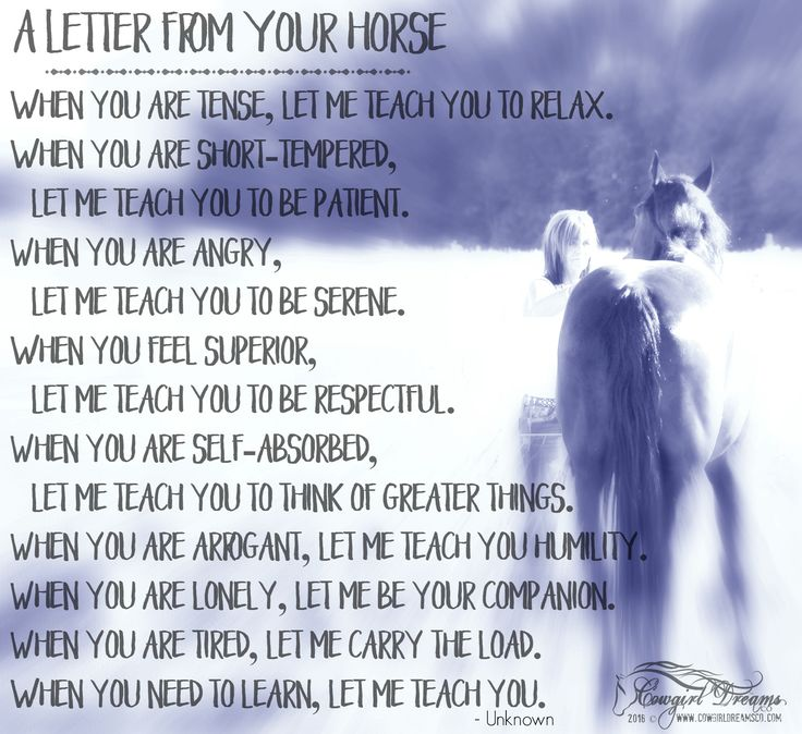 "There's an quote by Buck Brannaman: ""A horse is a mirror to your soul........"" There's been so many lessons...some I didn't even know I needed to learn. What has your horse taught you?"