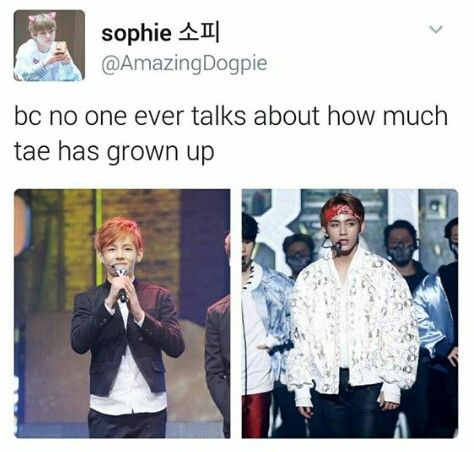 literally everyone talks about how much taehyung has grown fym lets talk about how much hobi changed or namjoon