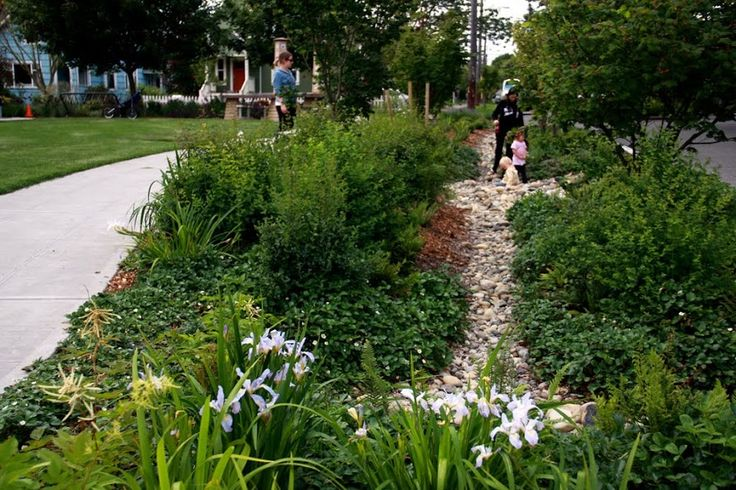 Interesting trail in the middle of rain garden swale for Barker landscape architects