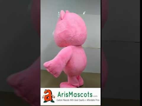The Care Bears mascot outfit for party