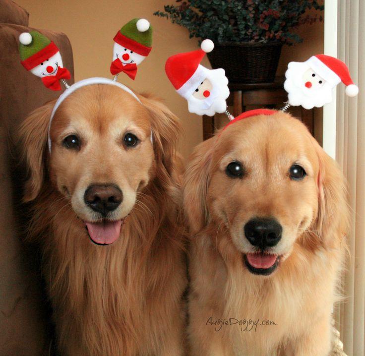Boys can wear Christmas headbands, right? :)