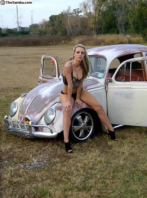 VWVortex.com - Bugs & Babes!