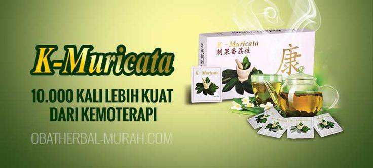 Paket perpaduan K-Muricata dan Amazon Plus dalam mengobati penyakit kanker payudara terbukti menjadi obat herbal kanker payudara stadium 4 paling ampuh
