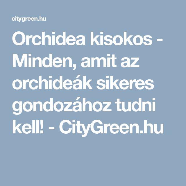 Orchidea kisokos - Minden, amit az orchideák sikeres gondozához tudni kell! - CityGreen.hu