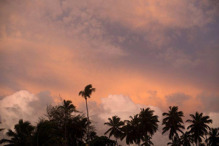 Поездка в Доминикану   2016 – 42 фотографии