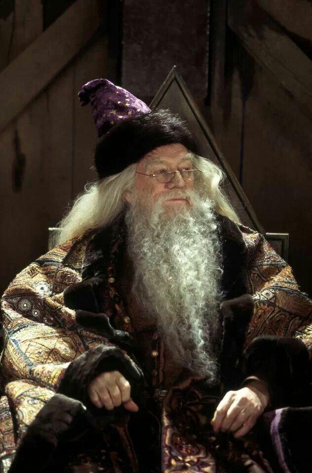 Harry Potter -Albus Dumbledore   Albus Perkamentus
