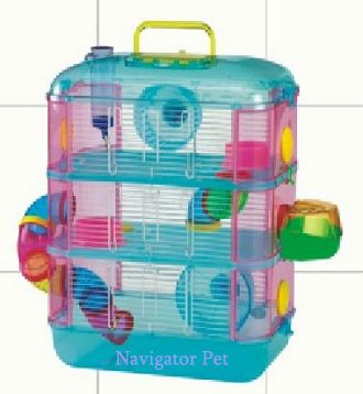 hamster supplies - Google Search