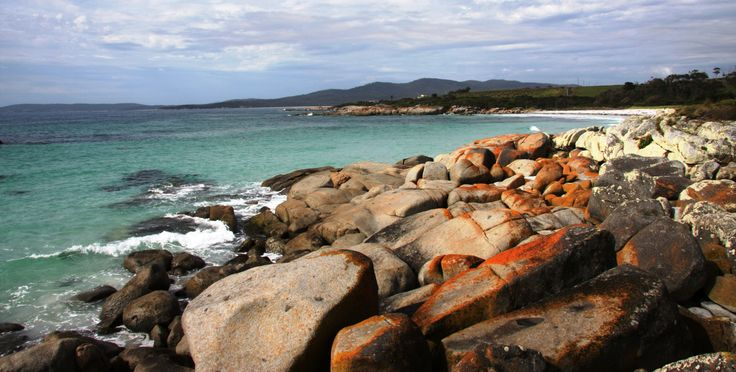 Bay of Fires, is a must visit when travelling Tasmania. It's a great place to relax and spend some time.  Excellent camping and stunning white beaches with aqua blue water. Bliss. #discovertasmania #bayoffires #eastcoasttasmania