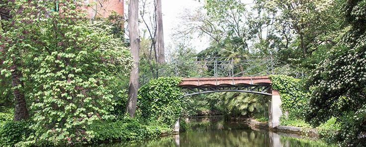 Colinas, parques y jardines urbanos conforman un auténtico pulmón verde en el…