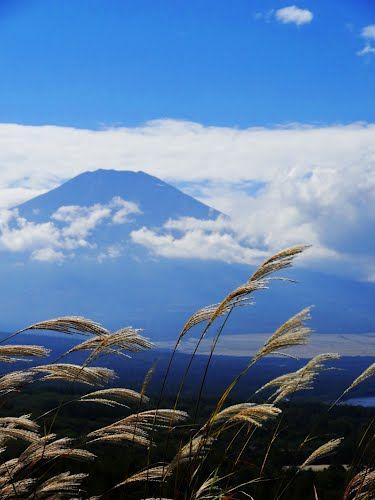 Mt, Fuji 富士の秋 Yamanashi Prefecture, Japan