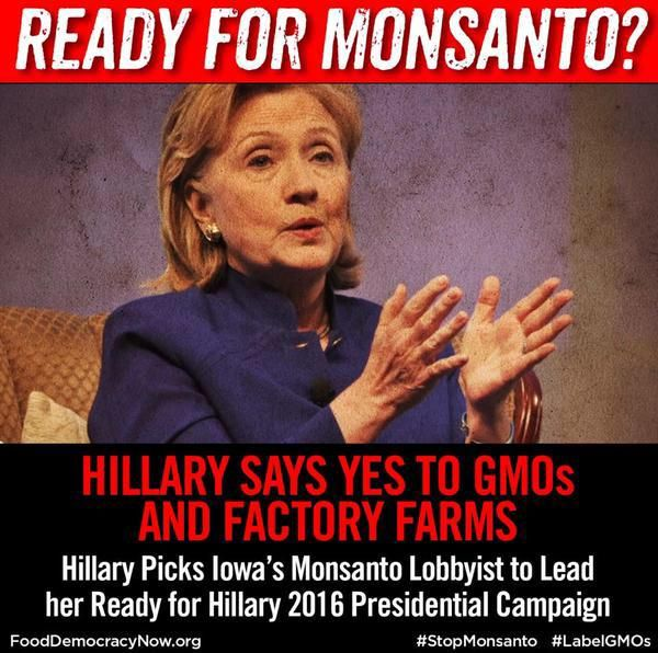 Hillary Clinton Loses Voters to Bernie Sanders Over Her Pro-GMO Stance - Question Everything
