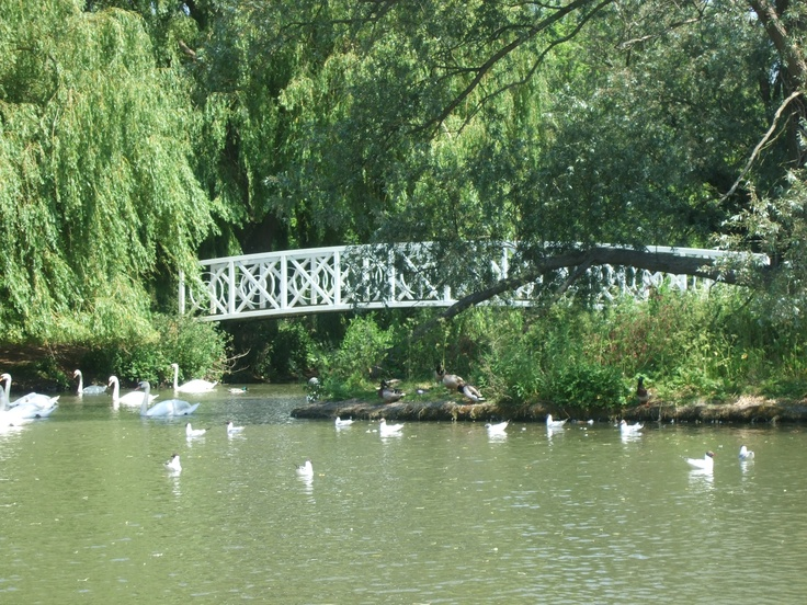 Riverside park St.Neots
