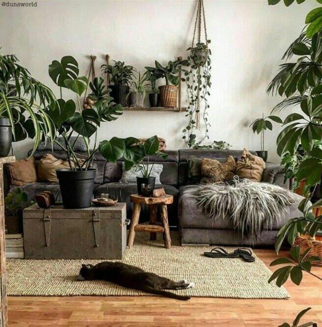 Shelbyjeffels Home Decor Living Room Designs Living Decor