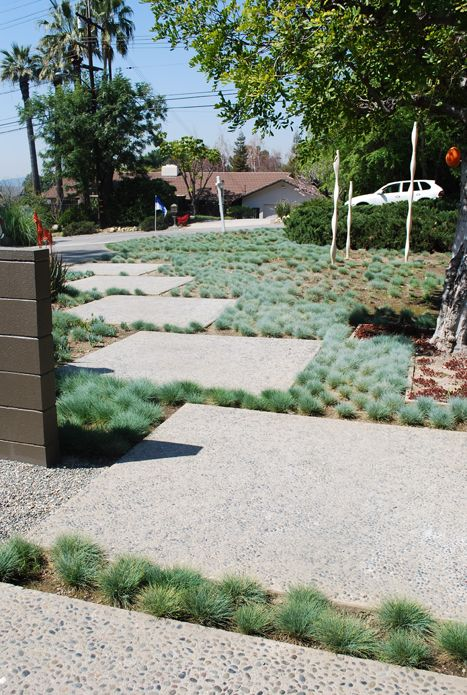 Mid-century home landscaping