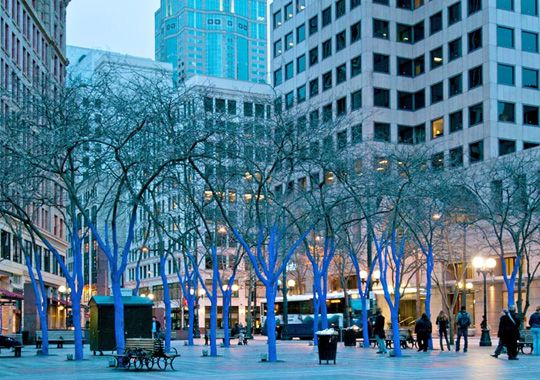 Westlake Park, Seattle, where artist Konstantin Dimopoulos created The Blue Trees art installation