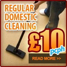 Cleaning services in Clapham SW4 could make your day easier.  http://www.cleaning-services-clapham.co.uk/